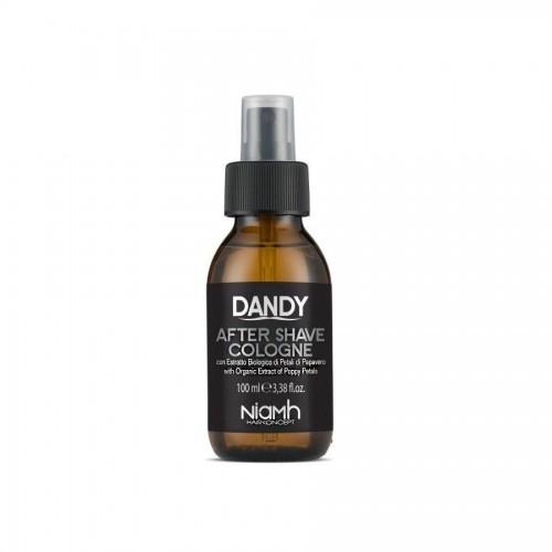 Dandy After Shave voda po holení 100 ml